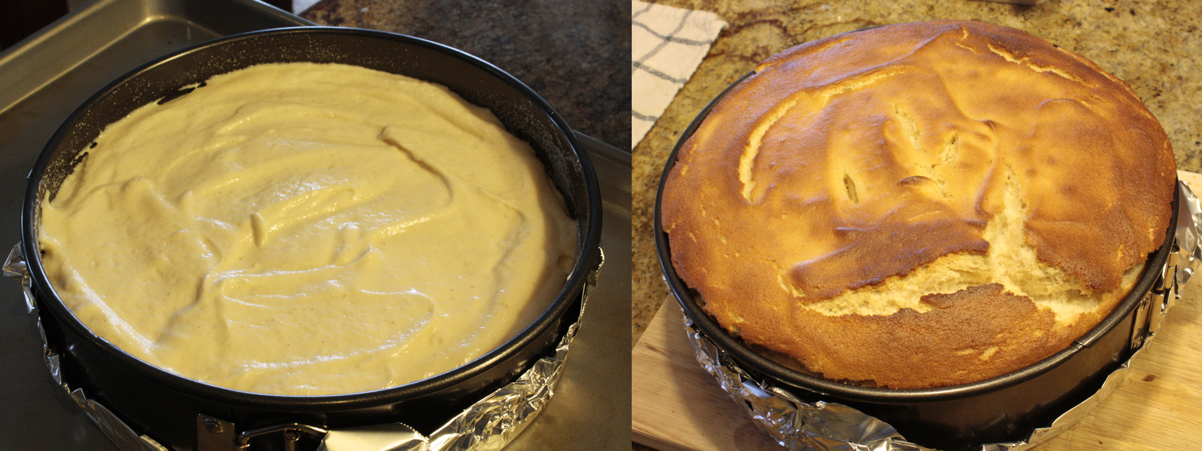 Yogurt Cheesecake Yogurt Spongecake Spongurt Cake